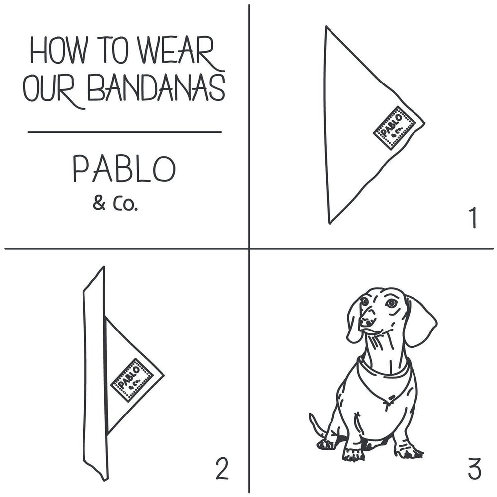 PABLO & CO - Fried Chicken Dog Bandana