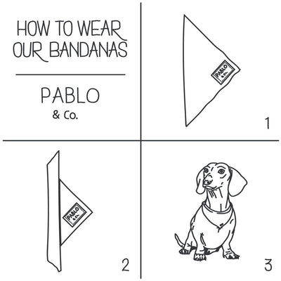 PABLO & CO - Butterflies Dog Bandana
