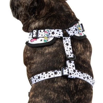 BIG & LITTLE DOGS - The Bolt Adjustable Dog Harness