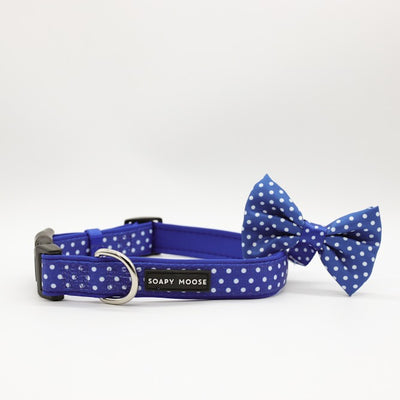 SOAPY MOOSE - Blue & White Polka Dots Collar & Bow Tie