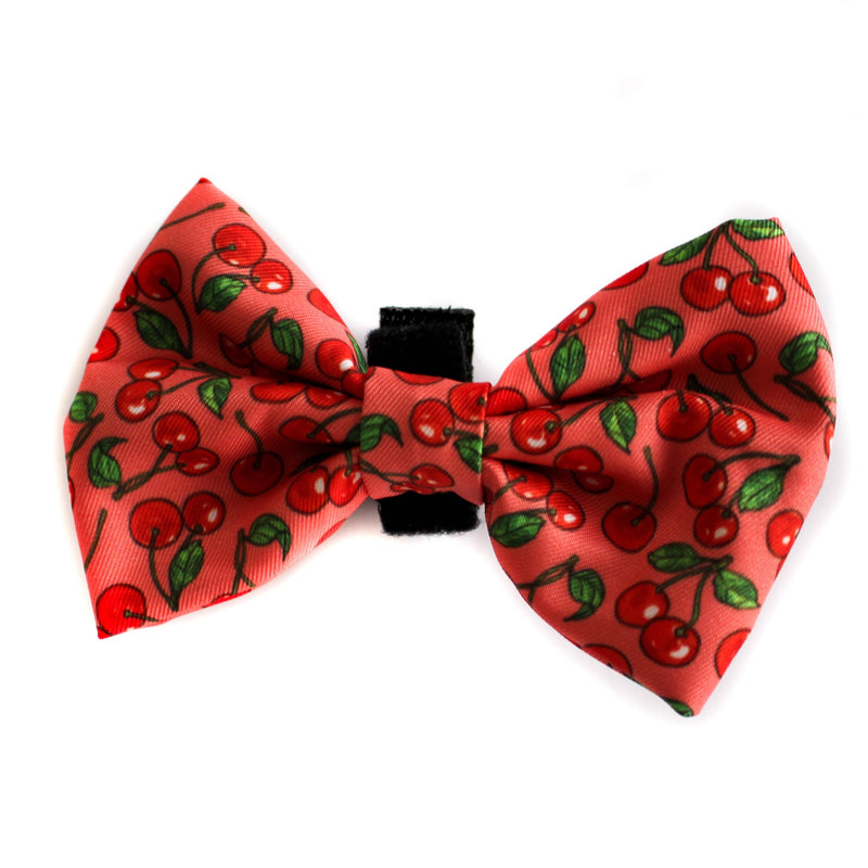 PABLO & CO - Cherry Bowtie