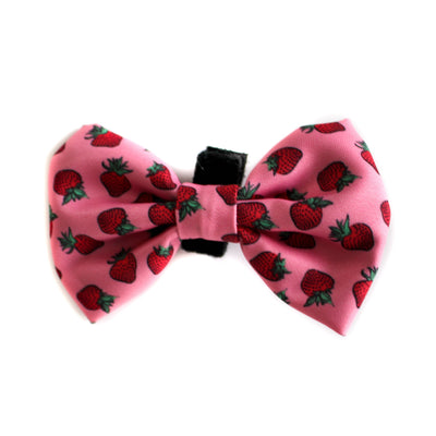 PABLO & CO - Strawberry Bowtie
