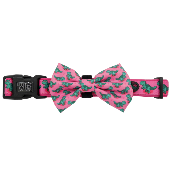 BIG & LITTLE DOGS - Princess-asaurus Dog Collar & Bow Tie