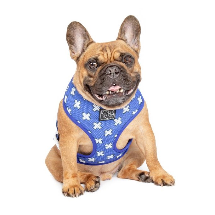 [LAST CHANCE] BIG & LITTLE DOGS - The Classic Print Harness: Blue X's Dog Harness
