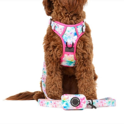 BIG & LITTLE DOGS - Cotton Candy Dog Poop Bag Holder