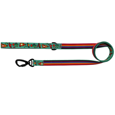 BIG & LITTLE DOGS - Mexican Fiesta Dog Leash