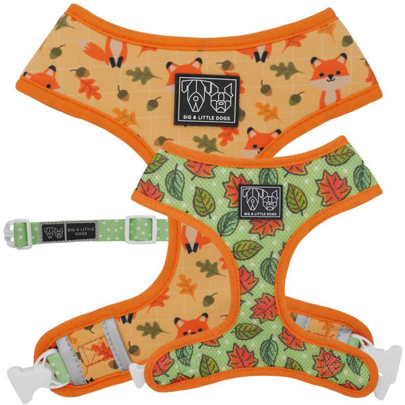 [LAST CHANCE] BIG & LITTLE DOGS - Feeling Foxy Dog Harness