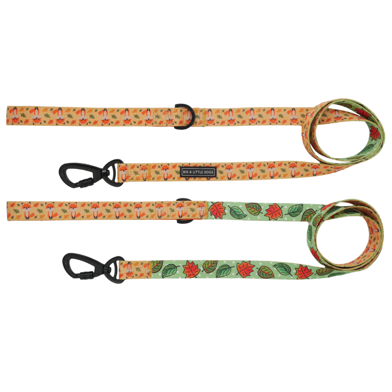[LAST CHANCE] BIG & LITTLE DOGS - Feeling Foxy Dog Leash