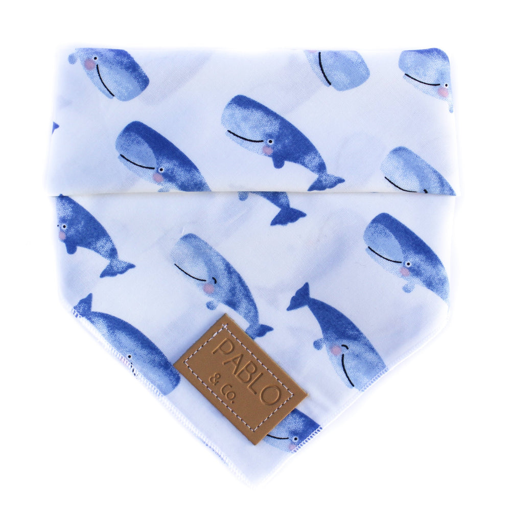 PABLO & CO - Whale of a Time Bandana