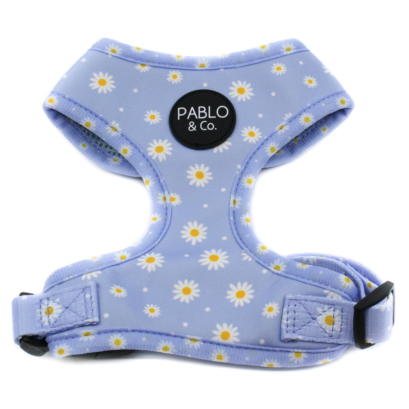 PABLO & CO - Blue Daisy Adjustable Dog Harness