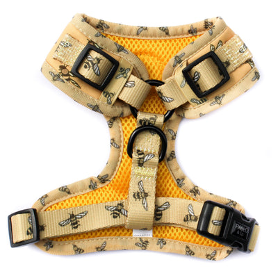 PABLO & CO - Bumblebee Adjustable Dog Harness