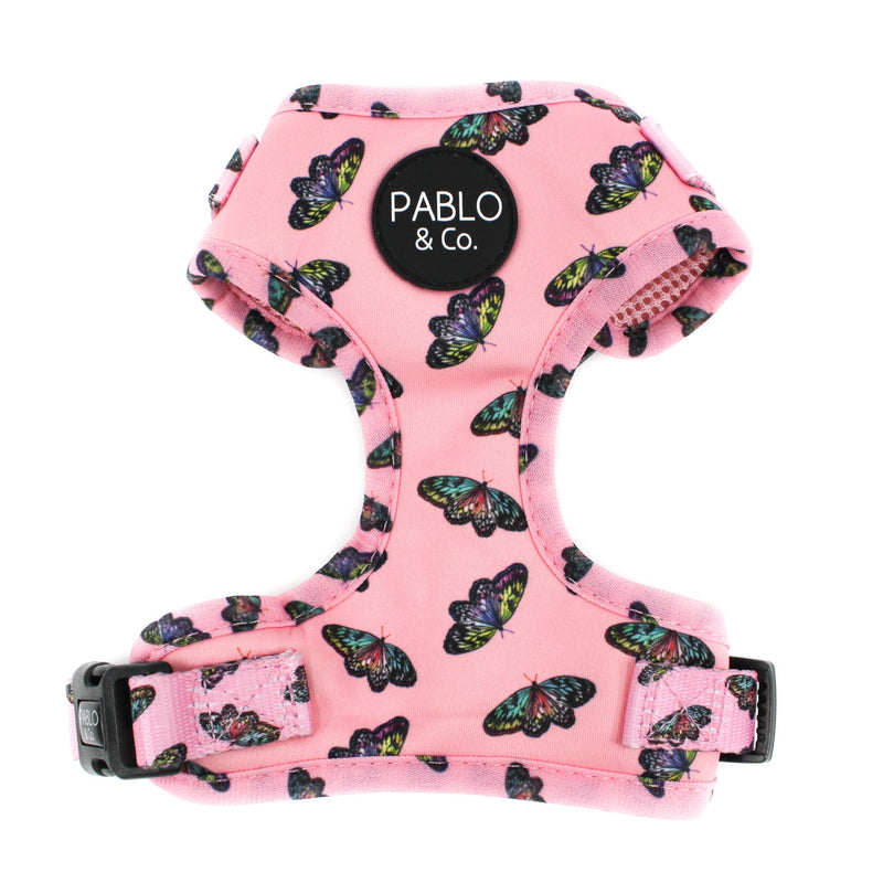 PABLO & CO - Butterflies Adjustable Dog Harness