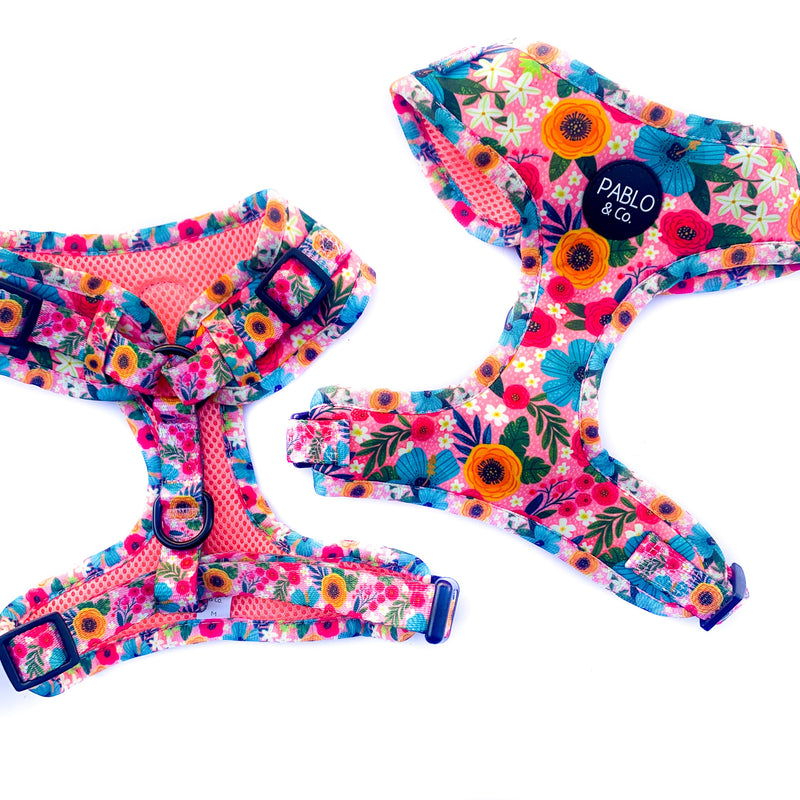PABLO & CO - The Floral Edit Adjustable Dog Harness