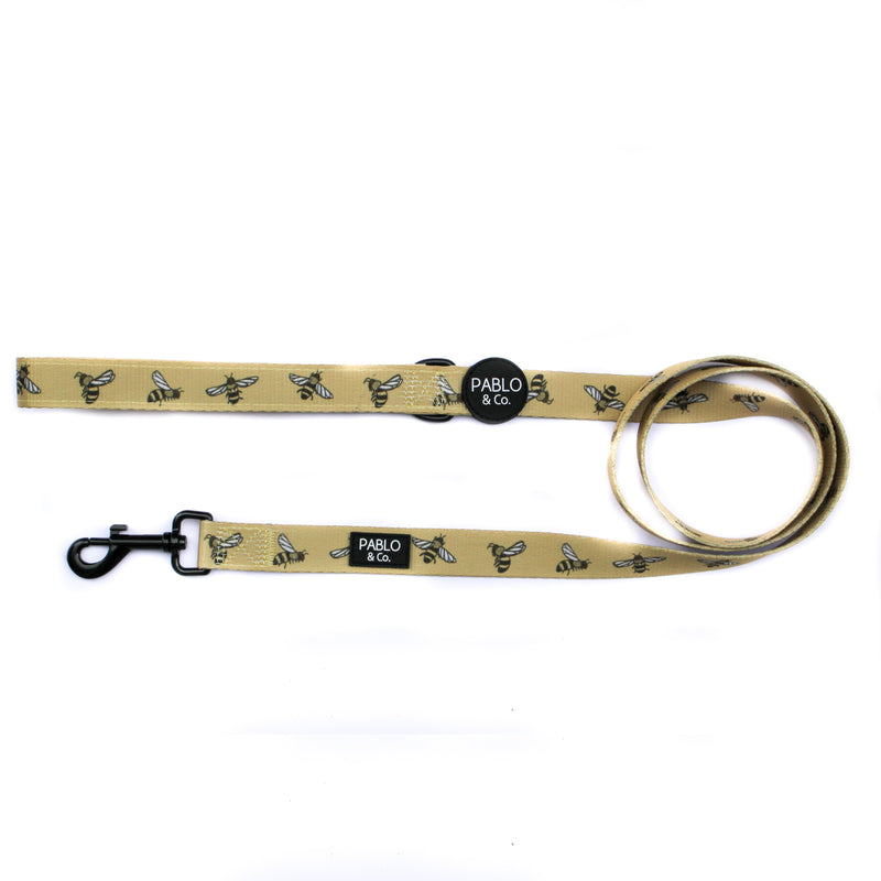PABLO & CO - Bumblebee Dog Leash