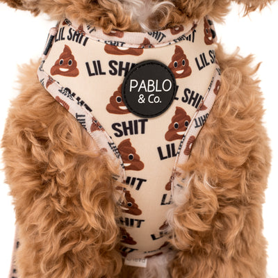 PABLO & CO - Lil Shit Adjustable Dog Harness