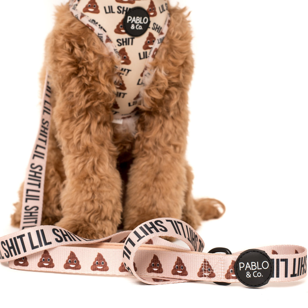 PABLO & CO - Lil Shit Dog Leash