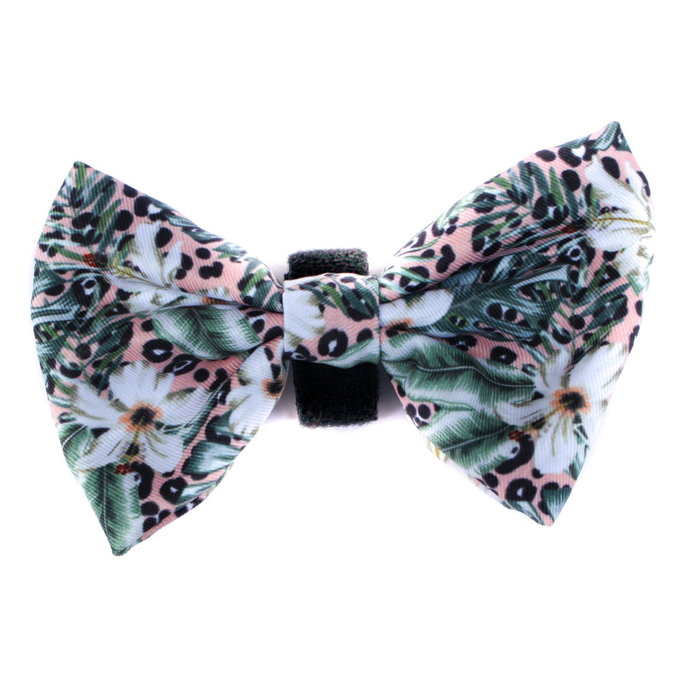 PABLO & CO - Palm Beach Bowtie