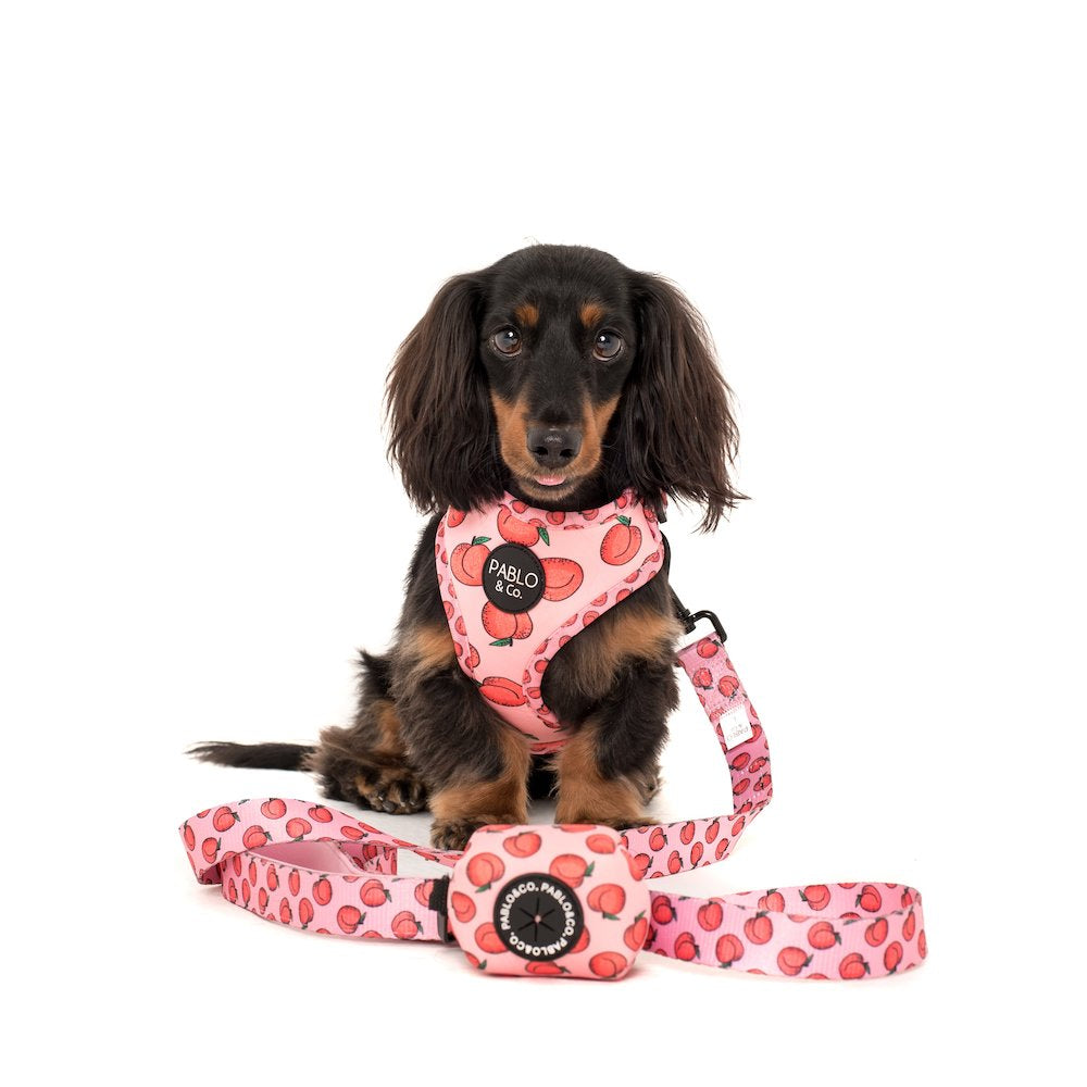 PABLO & CO - Peachy Dog Poop Bag Holder