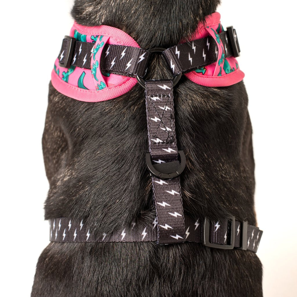 BIG & LITTLE DOGS - Princess-asaurus Adjustable Dog Harness