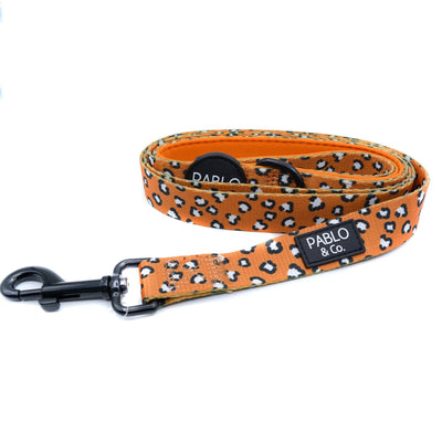 PABLO & CO - That Leopard Print Dog Leash