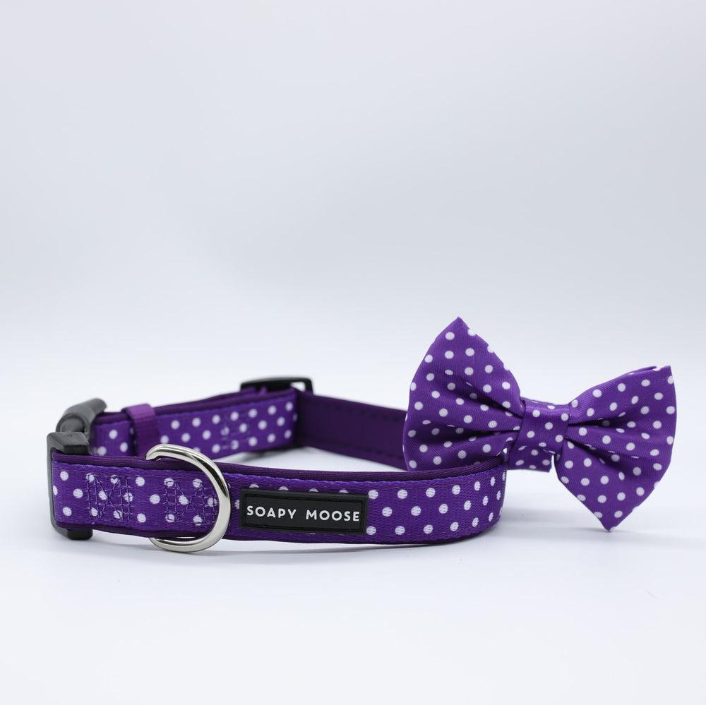 SOAPY MOOSE - Purple & White Polka Dots Collar & Bow Tie