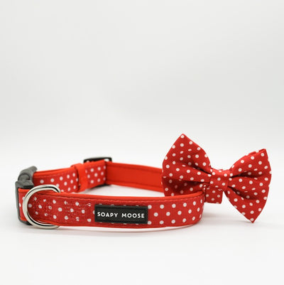 SOAPY MOOSE - Red & White Polka Dots Collar & Bow Tie