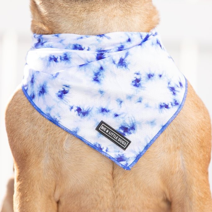[LAST CHANCE] BIG & LITTLE DOGS - Tie Dye Blue Dog Bandana