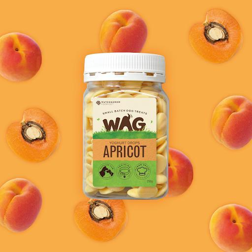 FETCH CONNECTION - WAG Yoghurt Drops for Dogs Apricot 250g