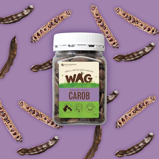 FETCH CONNECTION - WAG Yoghurt Drops for Dogs Carob 250g