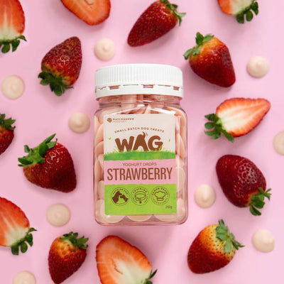 FETCH CONNECTION - WAG Yoghurt Drops for Dogs Strawberry 250g