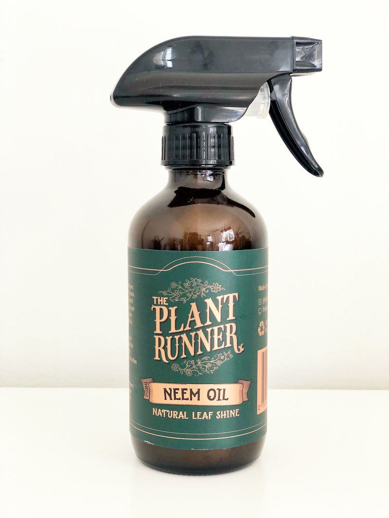 Neem oil leaf shine spray made by the plant runner