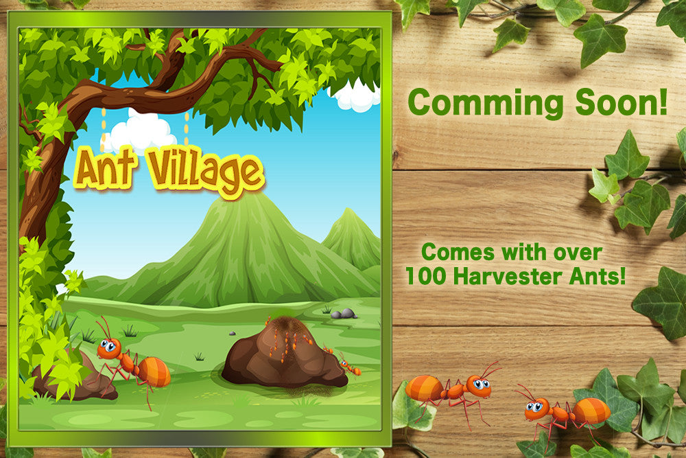 ANT VILLAGE-COMMING SOON
