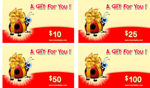 Gift Cards ... email gift cards ... quick and easy setup ... activation code included