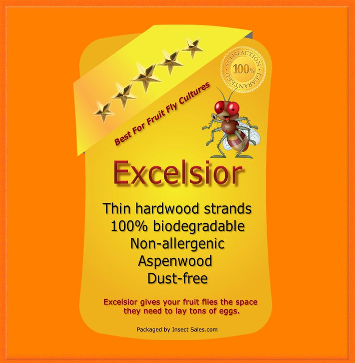 Excelsior (Aspen Natural Wood) Fine Fiber - Will Make approx. 50 Fruit Fly Cultures