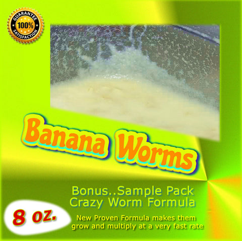 Banana Worms (Large Producing Cultures) 8 oz.