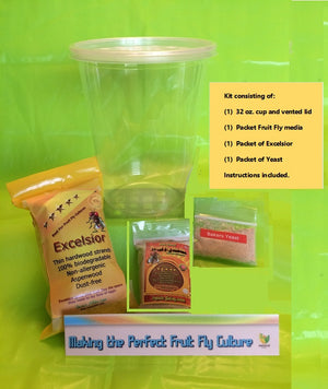 FRUIT FLY CULTURE KIT (HYDEI OR MELANOGASTER) -- One Kit Only
