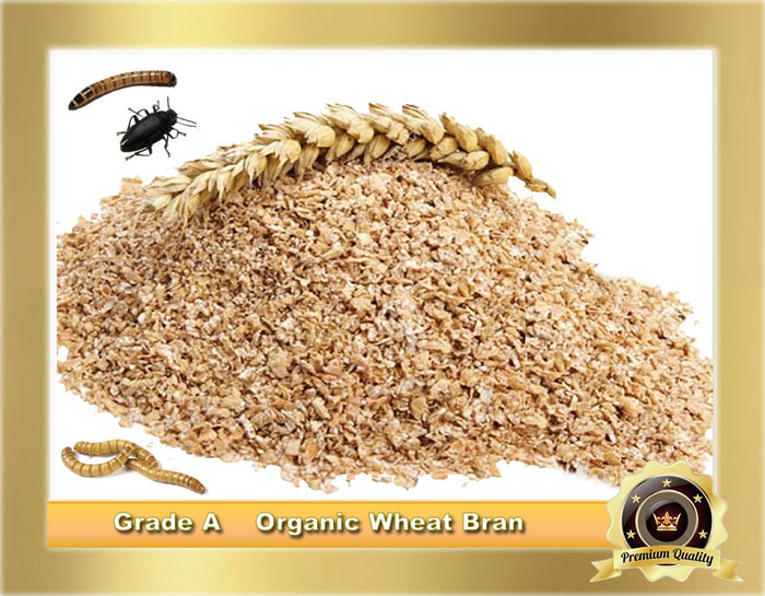 "1 LB. ORGANIC GRADE ""A"" WHEAT BRAN for Mealworms, Super Worms, Birds, Isopods"