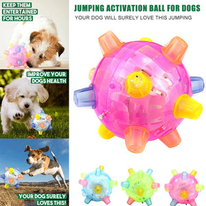 Formydoggy™ Jumping Activation Ball