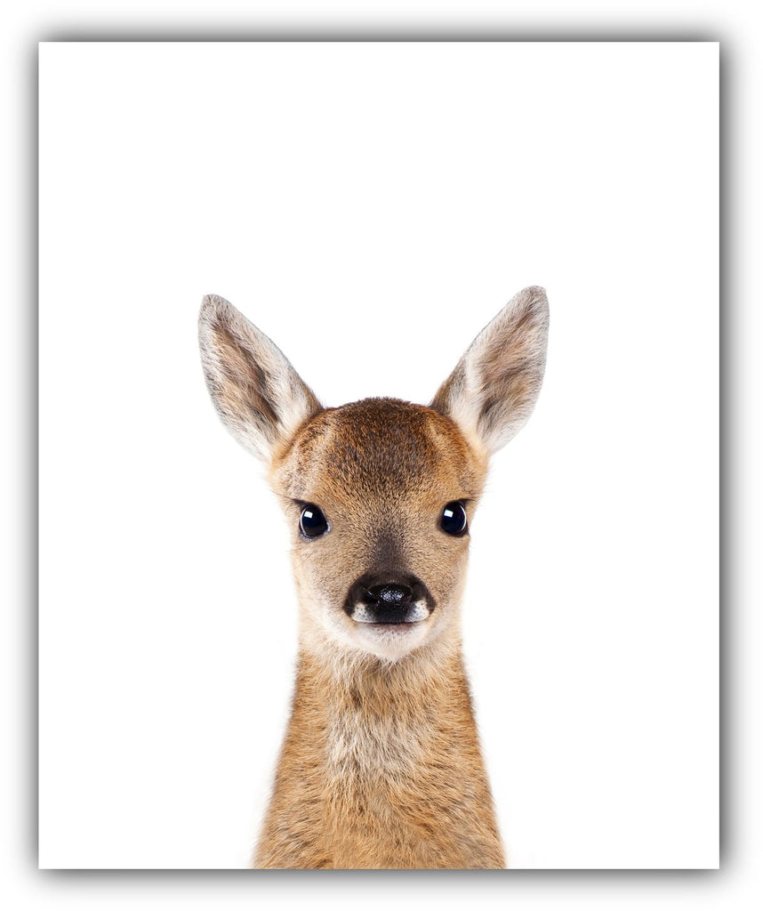 Woodland Nursery Wall Decor Animal Nursery Pictures 8x10