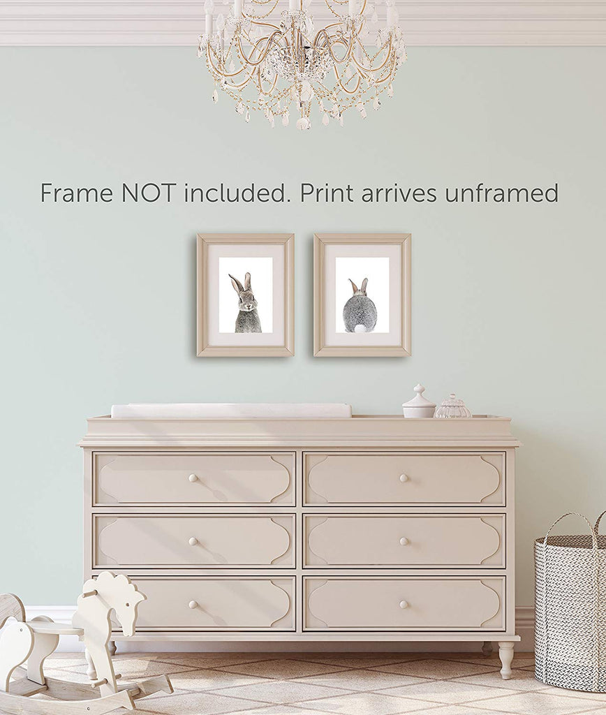 Baby Nursery Wall Decor Prints- Set of 2 Bunny Front and Back Photographic Print - UNFRAMED (8x10)