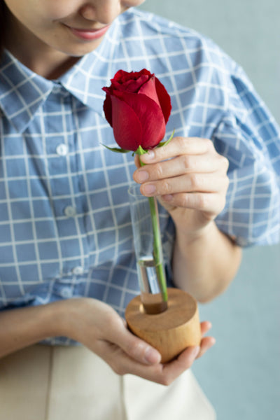 Propagation Kit with Free Rose