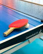 Table Tennis table for rent. International tables  available for play.