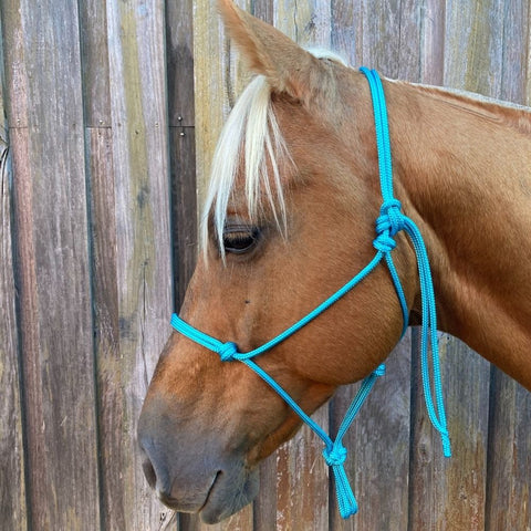 Ballynahinch Tack Rope Halter 6mm- Turquoise