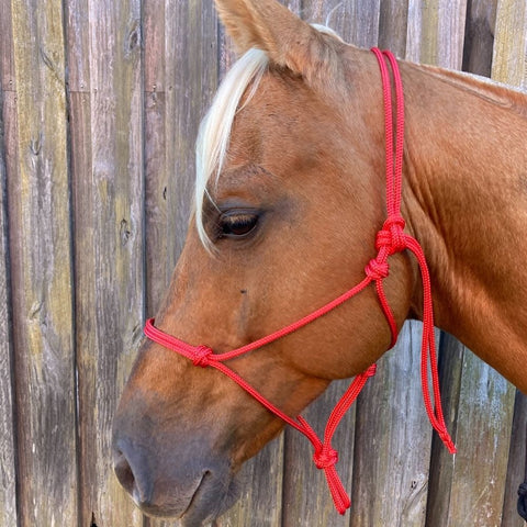 Ballynahinch Tack Rope Halter 6mm- Red