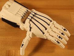 Functional Prosthetic Hand Project