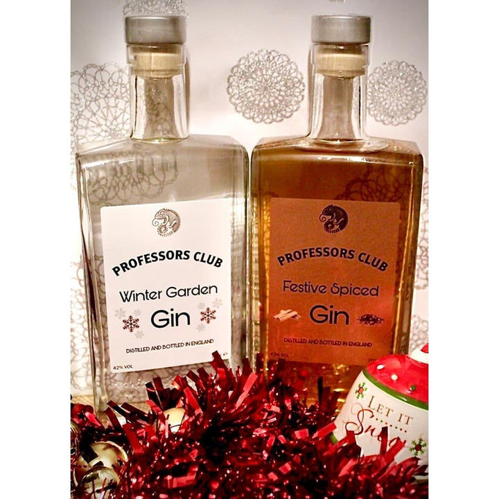 SPECIAL WINTER EDITIONS - Twin pack of Gin 70CL - Afterthought Spirits Company Ltd