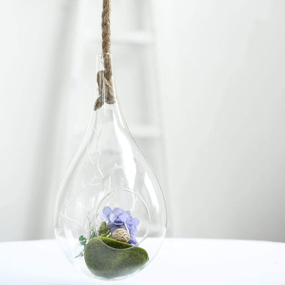hanging glass terrarium, hanging succulent planter, air plant holder, glass plant holder, air plant terrarium#color_parent
