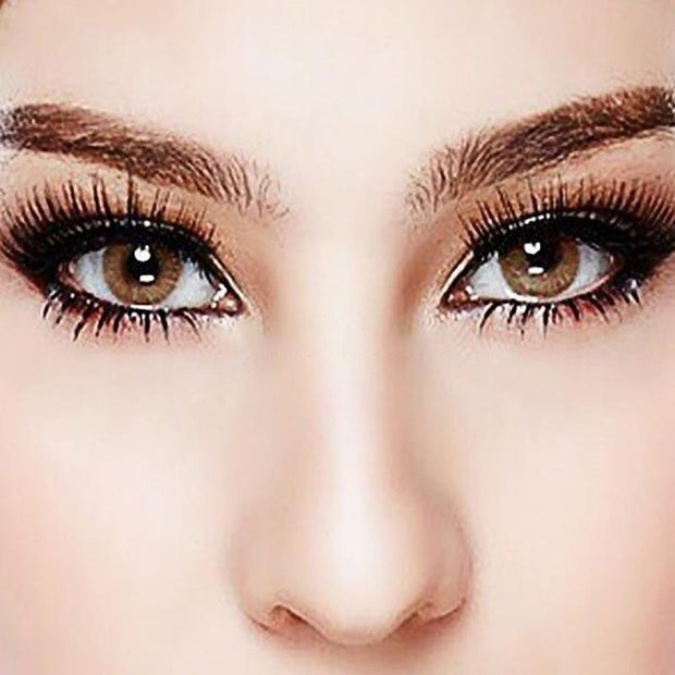 Honey dark brown (12 months) contact lenses