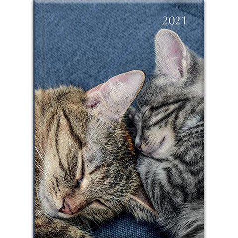 A5 Padded Diary - Cats & Kittens-Stationery-The Gifted Stationery-Thursford Enterprises Ltd.