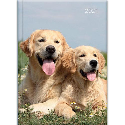 A5 Padded Diary - Dogs & Puppies-Stationery-The Gifted Stationery-Thursford Enterprises Ltd.